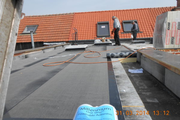 11. plaatsen dak